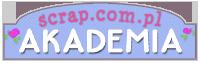 Akademia - banerek mini copy